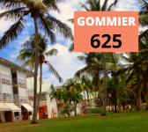 gommier
