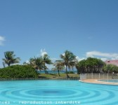 location-Saint-Fran--ois-vacances-balisier-piscine.jpg.pagespeed.ce.Hla6EpLPKR